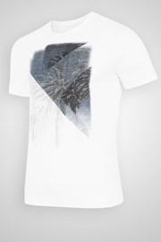 Męski T-shirt 4F Palms
