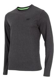 MęskT-shirt z długimi rękawami 4F szara