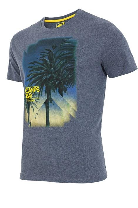 Męski T-shirt sportowt 4F Cape Town